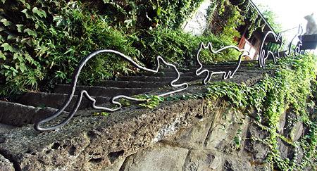 猫遊ぶ階段