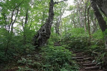 荒島岳(北陸ツーリング)-20100920-115857