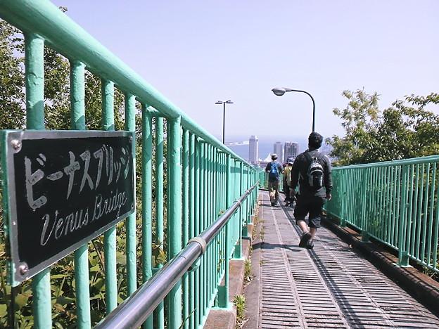 ビーナスブリッジ
