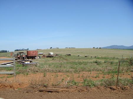 ガロさんの牧場 2
