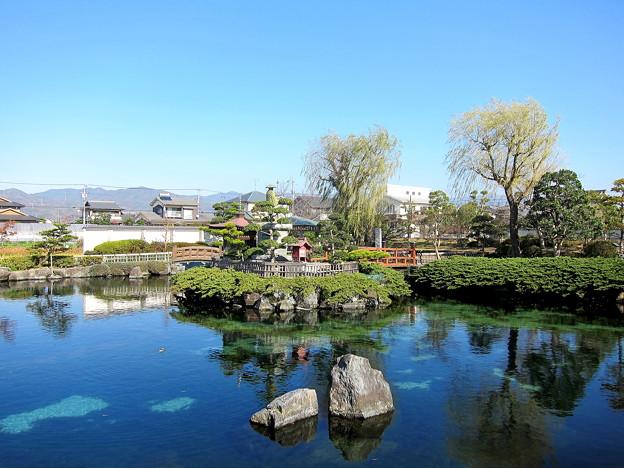 水と緑に囲まれた杖ノ淵公園です。