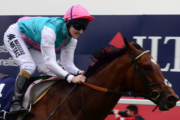 13.Frankel made it a remarkable ten wins from ten career starts -Lockinge Stakes-